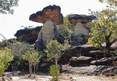 Nationalpark Pha Taem