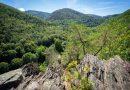 Wanderung Siegfriedfelsen – Griesbachfelsen – Böhlscheiben bei Bad Blankenburg